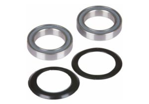 Campagnolo Power-Torque bearings and seals